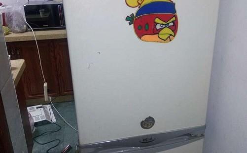 冰箱总是跳闸